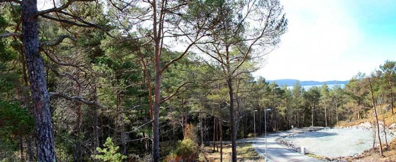 Tomt 65 – Panoramabilde