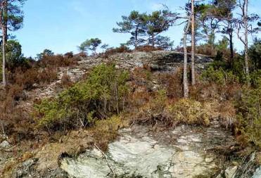 Tomt 67 – Panoramabilde – Fritt og høyt